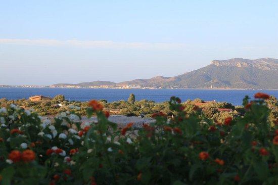 Club Hotel Baia Aranzos : Panorama tardo pomeriggio