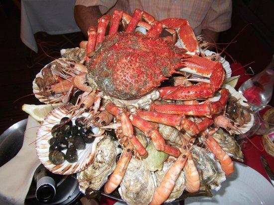 L'Ancrage : Plateau de fruits de mer surplombé d'une gigantesque araignée de mer
