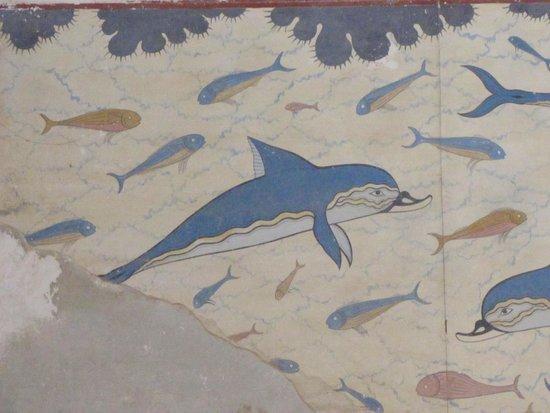 Le Palais de Cnossos : delfini
