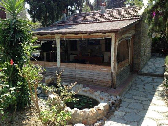 Old Datca Houses Mini Hotel: Mini Bahçe, Kitap okuma ve Tv İzleme alanı