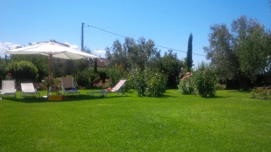 Villa Le Barone: il prato attorno alla piscina