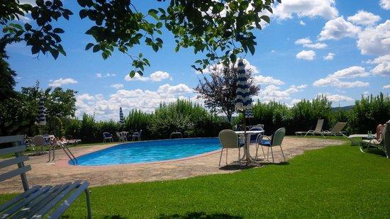 Villa Le Barone: La splendida piscina