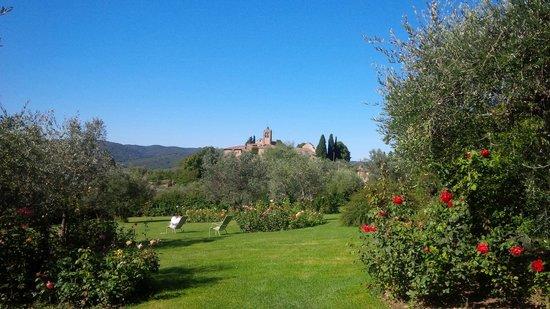 Villa Le Barone: il grandissimo giardino tutto intorno