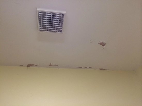 Lake House Country Hotel: Bathroom ceiling needing a little paint