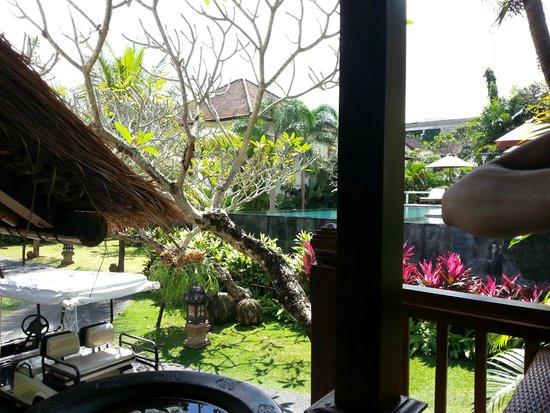 Pertiwi Resort & Spa: altra vista della piscina