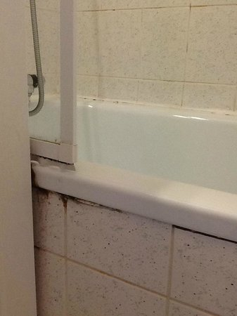 Sandy Cove Hotel: Mould in bathroom