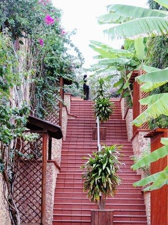 Diamonds La Gemma dell' Est: Лестница  номерам (3-х-уровневые террасы)