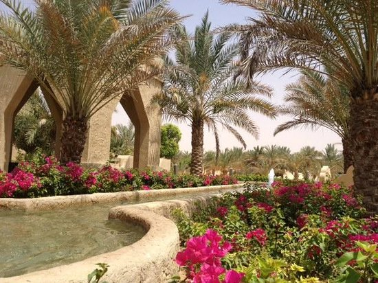 Qasr Al Sarab Desert Resort by Anantara: Hotel grounds... flowers and oasis