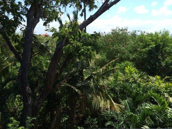 Padma Resort Legian: view from 400- room