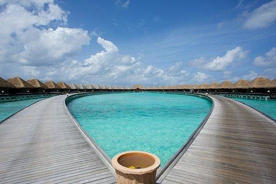 Taj Exotica Resort & Spa: 美しい桟橋