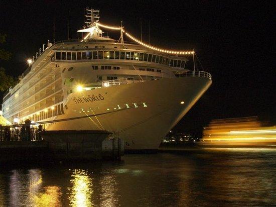 Sydney Harbour : the harbour