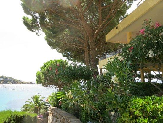 Almadraba Park Hotel: Gardens