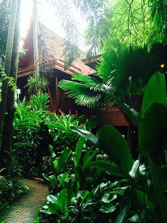 Maison de Jim Thompson : le jardin
