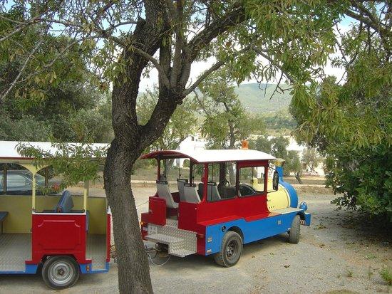 Ibiza Express Santa Eularia: Uno de nuestros trenes espera a la sombra a que sus pasajeros regresen a bordo