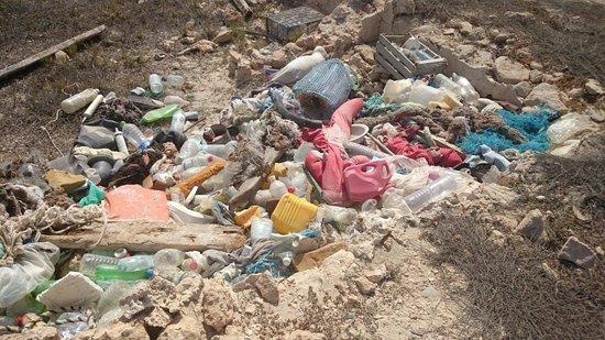 El Mouradi Djerba Menzel: The clean beach!