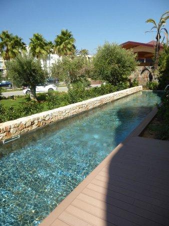 Protur Biomar Gran Hotel & Spa : Pool at swim up rooms