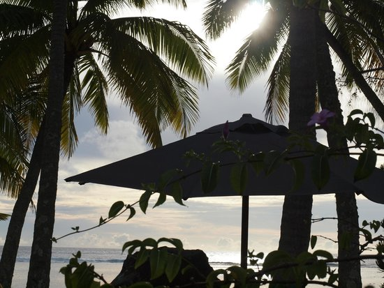 Sunhaven Beach Bungalows: view from the pool area