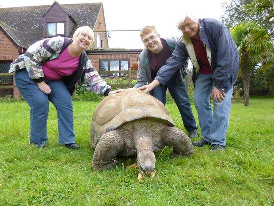 Linton Zoo: Feeding Jude the giant tortoise on the Tortoise Tour.