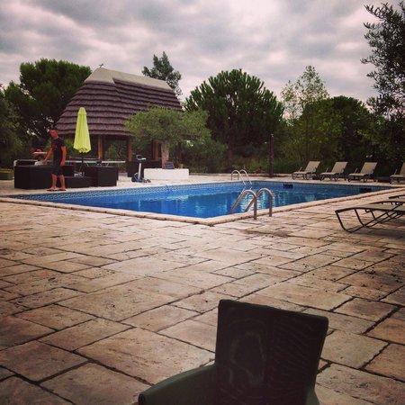 Mas de Calabrun : superbe piscine du Mas