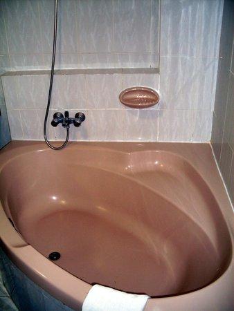 Ohtels Playa de Oro : ванна