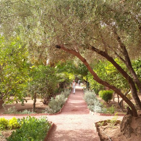 Dar Ayniwen Villa Hotel : le jardin