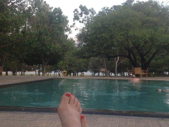 Amaya Lake : Poolside