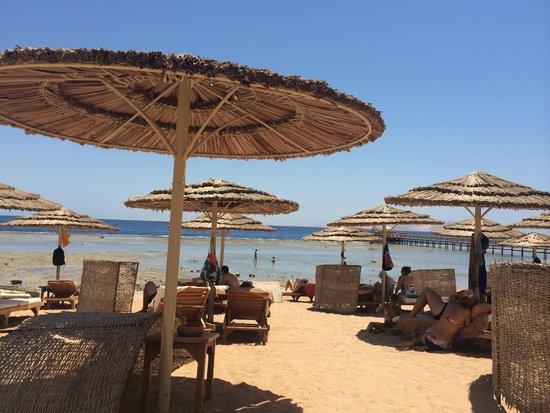 Cleopatra Luxury Resort Sharm El Sheikh: Spaiggia