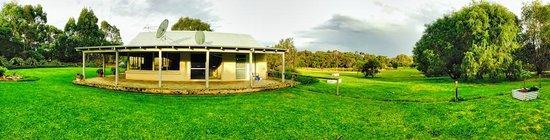 Acacia Chalets & Margaret River Beach Studios: Green