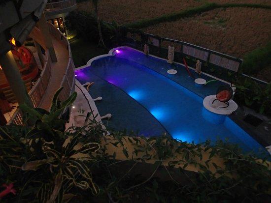 Floating Leaf Eco-Luxury Retreat: The pool by night