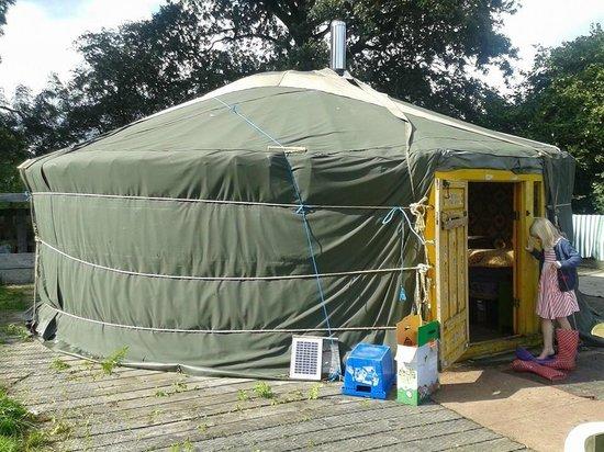 Blackdown Yurts - Yurt Holidays in Devon: Buzzard Yurt