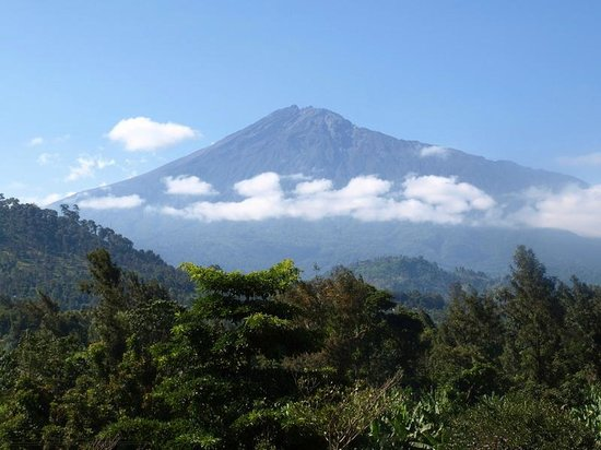 Image result for mt meru in arusha