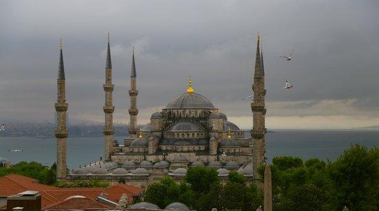 Deluxe Golden Horn Sultanahmet Hotel: Blue Mosque from Golden Horn Sultanahmet Hotel
