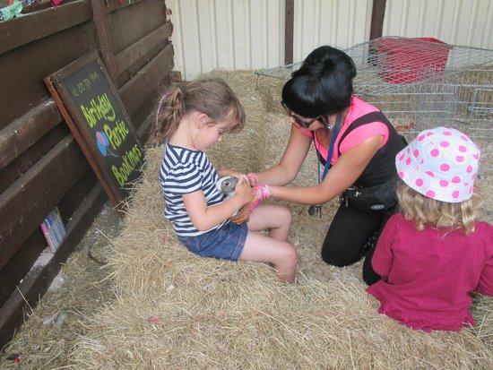 Thrift Farm: Animal handling