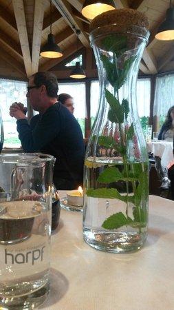 Restaurant Picknick: Acqua con ramo di menta e spicchio di limone
