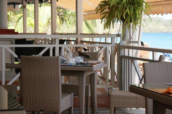 Hotel-Club Trois Ilets: Restaurant