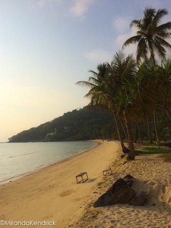 Phi Phi Island Village Beach Resort : outrigger phi phi beach