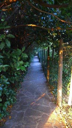 Parco Gallorose : l'entrata dall'uscita...
