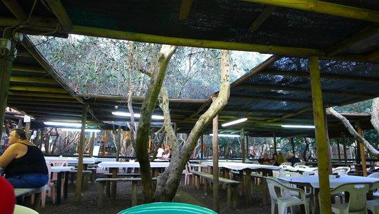 Parco Gallorose : il ristoro