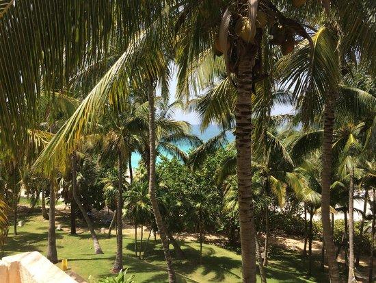 Melia Las Americas: vue d'un côté de l'hôtel