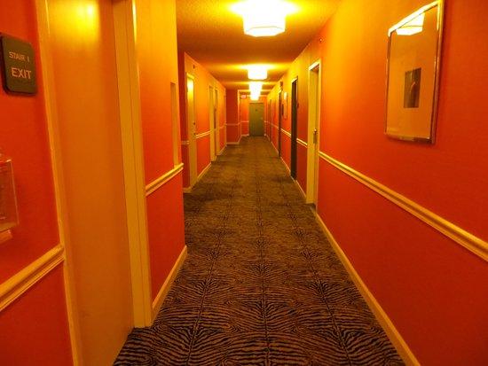 Kimpton Rouge Hotel: Hallway