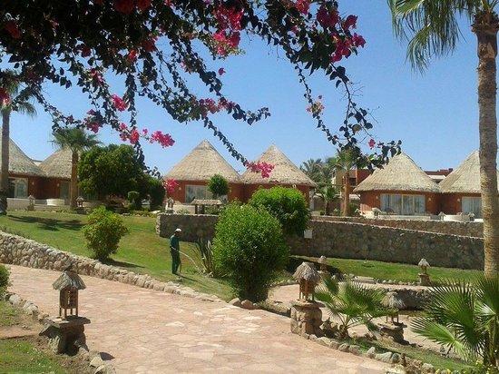 Laguna Vista Beach Resort : le camere