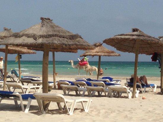 Iberostar Mehari Djerba : Spiaggia