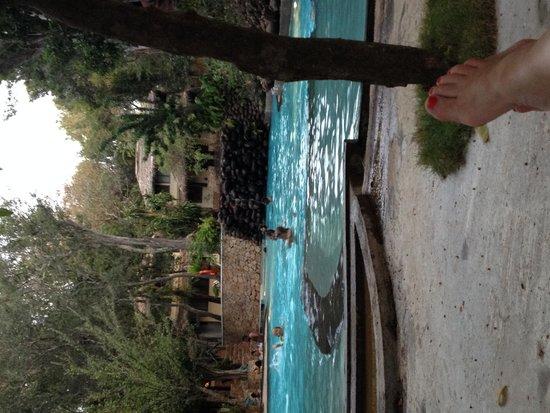 Deer Park Hotel : The pool