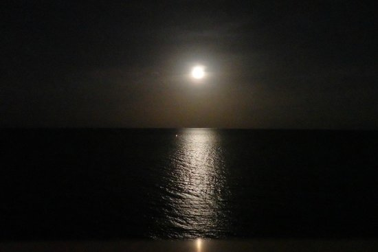 Pelican Grand Beach Resort, A Noble House Resort : Moonrise from the balcony