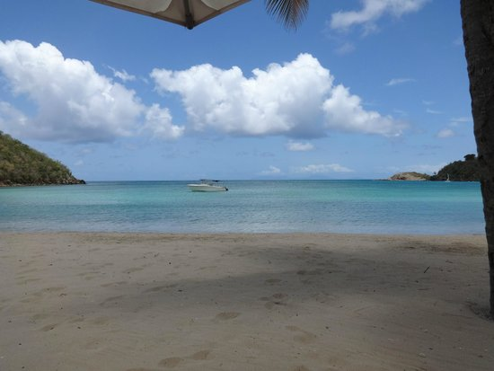 Carlisle Bay Antigua : view from my sun bed