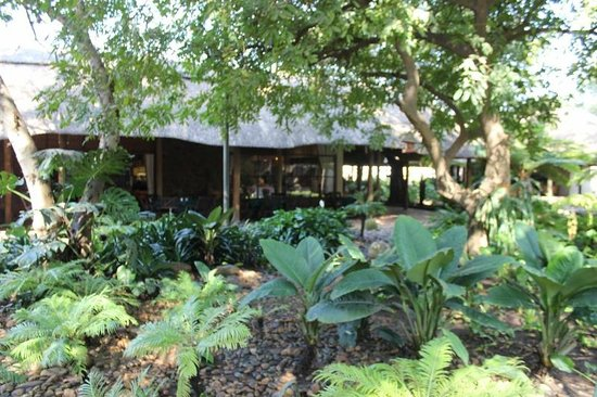 Pongola Country Lodge: an oasis in the middle of Pongola