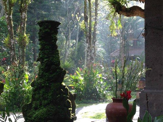 Alam Indah : Vue au p'tit Dej