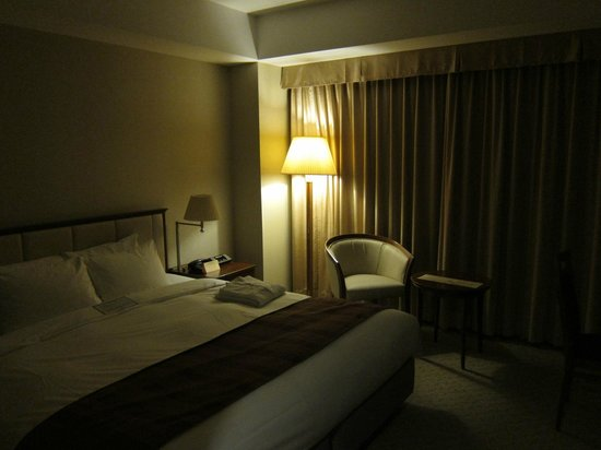 Hotel Century Southern Tower: 一般房