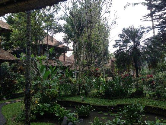 Alam Indah : Jardin Bis