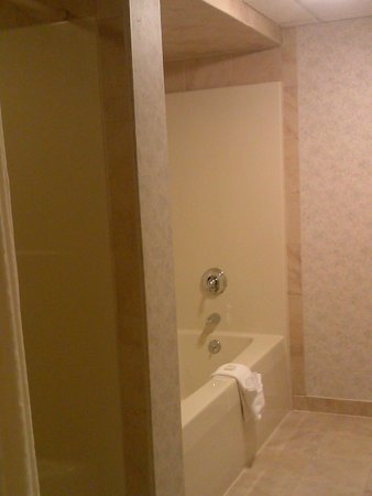 Villa Roma Resort and Conference Center: Bathroom